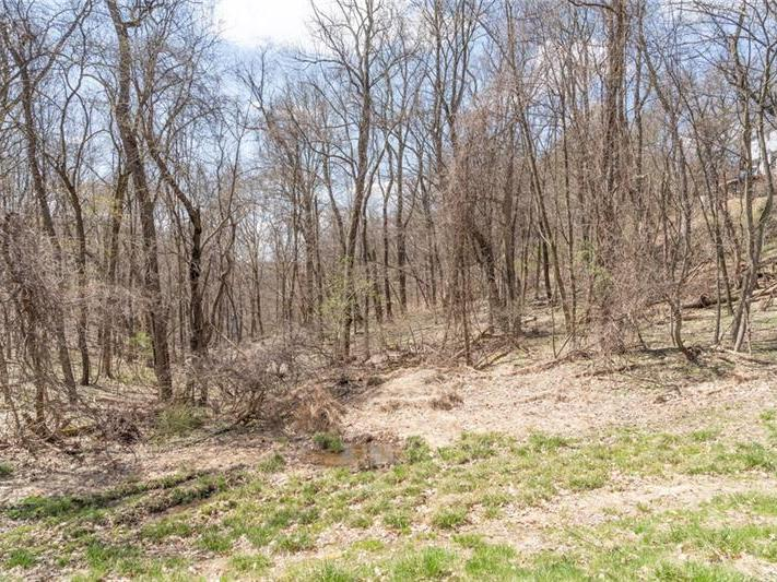 1378625 | Lot 502 Off South Mccoy Sewickley 15143 | Lot 502 Off South Mccoy 15143 | Lot 502 Off South Mccoy Aleppo 15143:zip | Aleppo Sewickley Quaker Valley